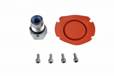 Fuel System - Fuel Pressure Regulators - Aeromotive Fuel System - Aeromotive Fuel System Regulator Repair Kit 13203 13007